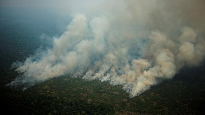 A diez días de la reunión de Piñera con Bolsonaro: Cuál es la situación de los incendios en la Amazonía