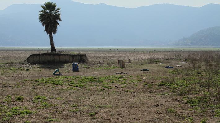 """""""La desertificación avanza"""": El análisis de expertos a la tesis que surge en medio de la sequía"""