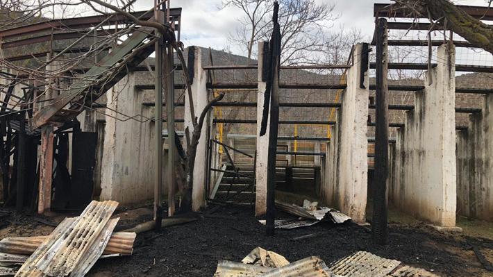Municipalidad de Curacaví presentará querella contra quienes resulten responsables tras incendio en medialuna