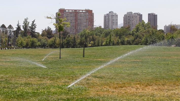 ¿Fin del pasto en los parques urbanos?: Las opciones para diseñar estos espacios ante el escenario de escasez hídrica
