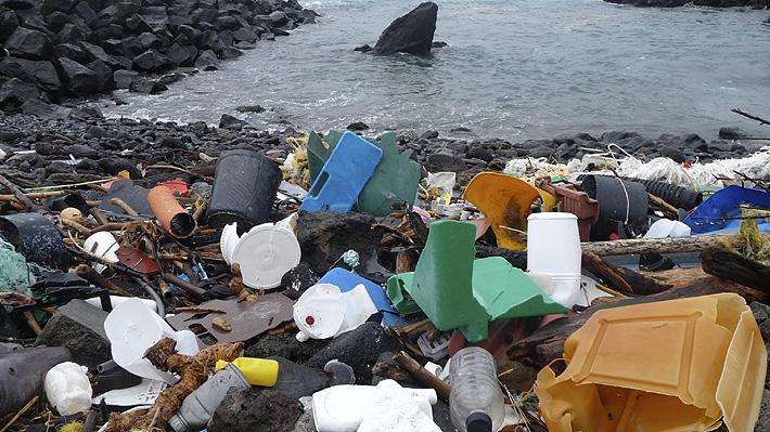 ONGs ambientalistas advierten que plásticos biodegradables podrían aumentar la contaminación del mar