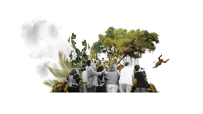 Un antes y un después: ¿Por qué los brasileños están más interesados en la Amazonía y el medio ambiente?