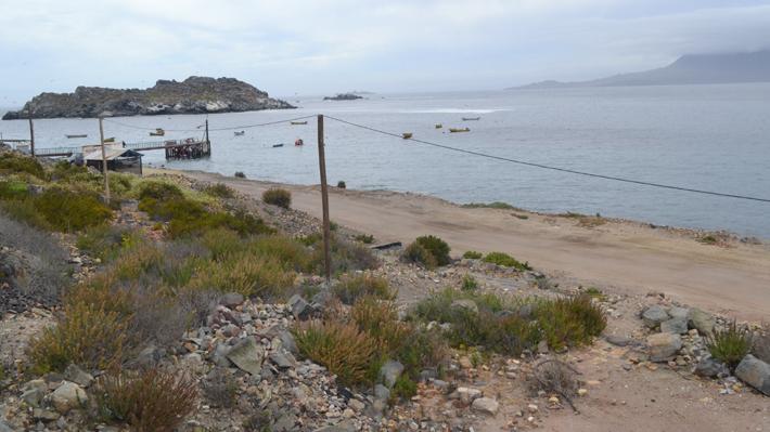 Proyecto Dominga vuelve al Tribunal Ambiental: Corte Suprema le ordena pronunciarse por temas que omitió