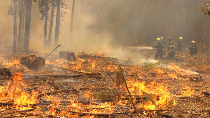 Presupuesto para temporada de incendios forestales alcanza cifra récord de $120 mil millones