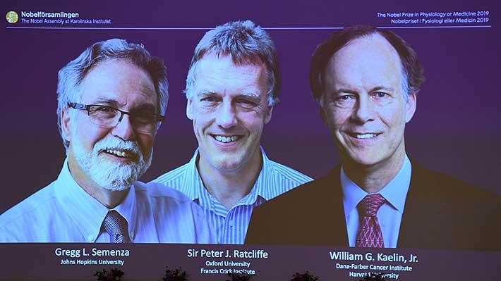 Tres científicos ganan el Premio Nobel de Medicina por su investigación en materia molecular