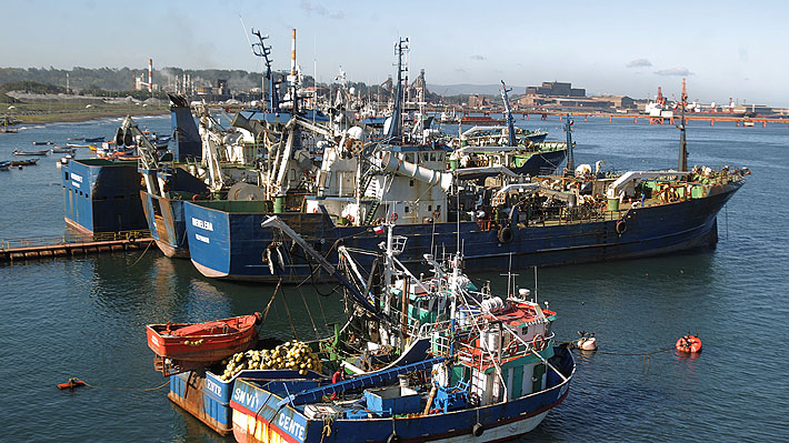 Gobierno acusa a Perú de violar tratado y de aumentar cuota de pesca de jurel de forma unilateral