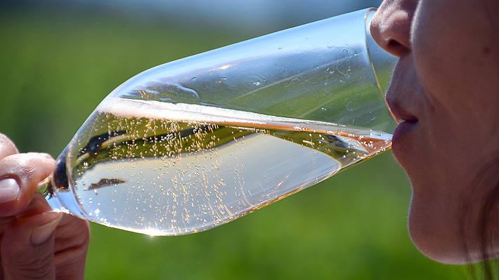 Francia en alerta por la champaña: advierten que el aumento de temperatura podría arruinar las uvas utilizadas para la bebida