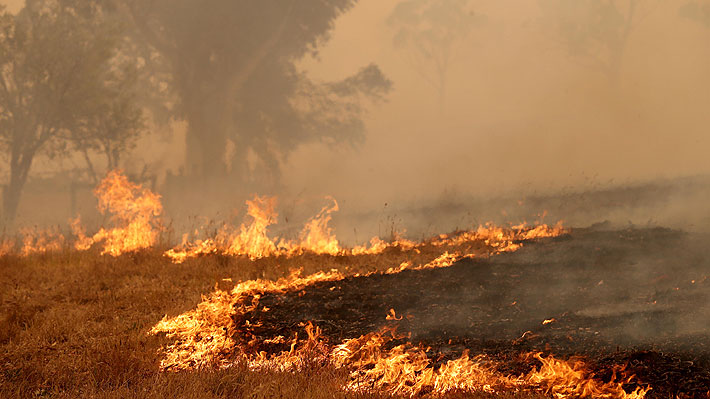 Dos bomberos que combatían incendios en Australia murieron tras volcarse el camión en el que se trasladaban