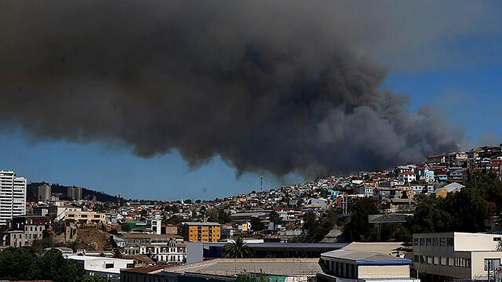 Incendio forestal obliga a evacuar dos zonas habitadas de Valparaíso: Habrían cuatro casas afectadas