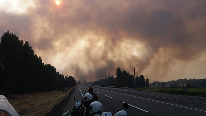 Onemi declara Alerta Roja para la comuna de Pinto  y Chillán por incendio forestal