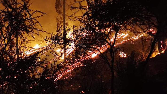 Incendios forestales: Decretan alerta roja en Talca y Curarrehue por siniestros que amenazan viviendas y antenas