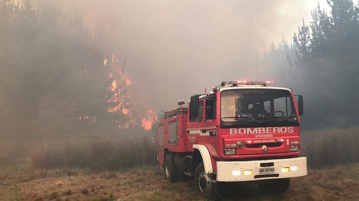 Alerta roja para Penco por incendio que amenaza sectores habitados: Siniestros se concentran en cuatro regiones