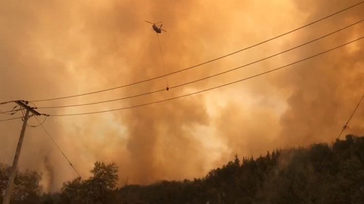 Incendio forestal cercano a Parque Nacional Radal Siete Tazas generó evacuación preventiva de 150 familias en Molina