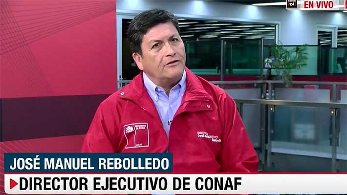 """Conaf detalla complejidades del incendio en Radal 7 Tazas y afirma que """"es lejos el más grande"""" de la temporada"""