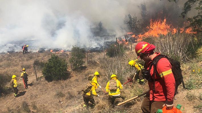Seis de cada 10 investigaciones por incendios de bosques finalizan con salidas no judiciales por falta de antecedentes