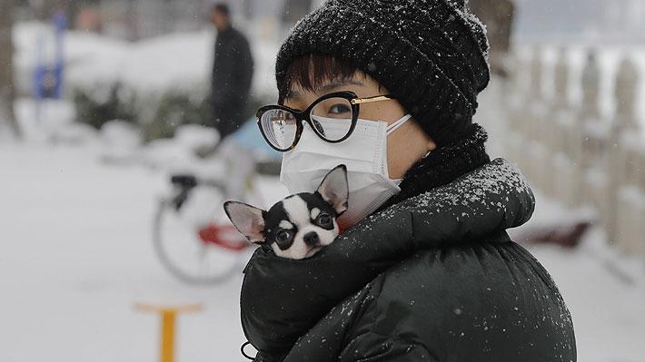 Oficina hongkonesa determina que personas contagiadas pueden transmitir el coronavirus a sus mascotas