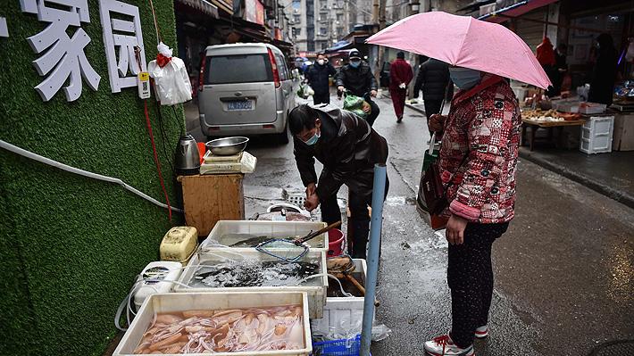 Ciudad china prohíbe el consumo de gatos, perros y animales silvestres para prevenir futuras epidemias