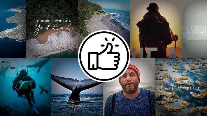 Vota y opina: ¿Qué documental finalista del Festival Santiago Wild te gustó más?