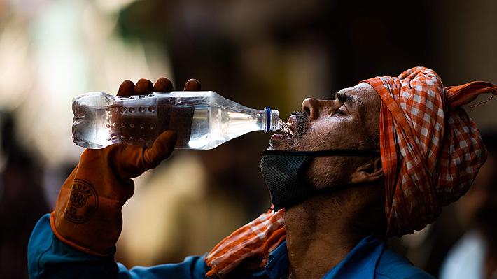 Ola de calor e invasión de langostas: Las otras plagas que azotan a India además del covid-19