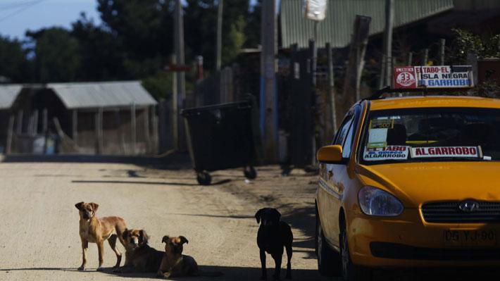 Denuncian que 1.140 cajas de mercadería fueron dejadas en la casa de un concejal de El Tabo