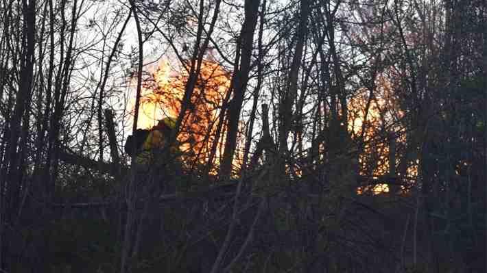 """Declaran alerta roja en Quilpué por incendio forestal """"cercano a sectores habitados"""""""